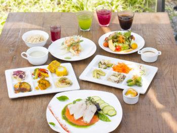 真庭の恵みが満載! 野菜たっぷりな地産地消ビュッフェを。