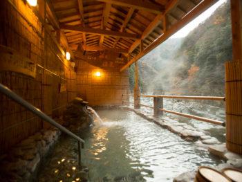専用のケーブルカーで行く、秘湯の祖谷温泉。
