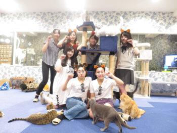 《猫の祭展》猫好き必見! 猫をテーマにして表現した、アートやライブやワークショップを楽しんで。
