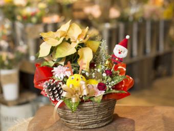 『ホームセンタータイム西市店』で、クリスマスアレンジづくりに挑戦しよう!