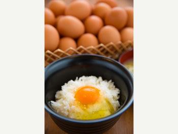 《たかたのたまご》新鮮な卵を使った「たまごかけごはん」やスウィーツを。