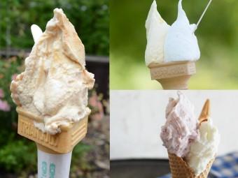 暑い夏に必食! クチコミで人気のジェラート7選