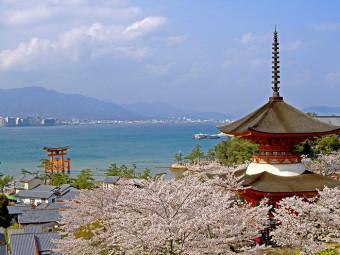 歴史情緒あふれる、神社・仏閣を彩る桜(2選)