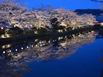 圧巻!水辺をピンク色に彩る桜並木(3選)。