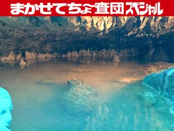 《新見市/満奇洞・井倉洞》神秘的で涼しい鍾乳洞で洞窟探検!