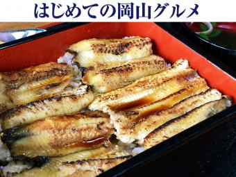 《瀬戸内市/青島》アナゴ料理専門店で食べた初めての「あなご重」に大満足!