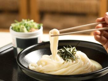《岡山市/うどん ふじもと》風味、コシ、のど越しの三拍子そろった、手打ち&手切りのもちもち麺。
