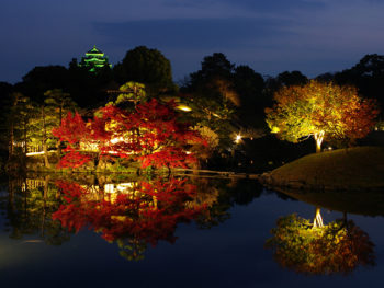 《秋の幻想庭園》紅葉を愛でながら、秋の夜長を楽しんで。
