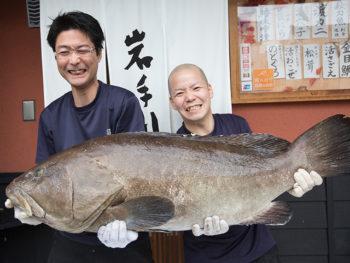 旬の魚料理を堪能できる『岩手川』で、クエ料理の数々を堪能しよう!