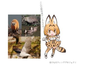 《岡山県自然保護センター×けものフレンズ》今度は「けものフレンズプロジェクト」とのコラボ企画を実現!