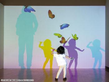 《魔法の美術館》魔法のように幻想的な世界に迷い込み、不思議な空間を体験しよう!