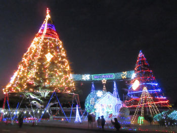思わず心が躍る! 今年行きたい クリスマスイルミネーション 県内編