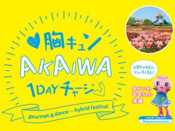 《胸キュンAKAIWA 1DAY チャージ》豪華アーティストの特別ステージとこだわりの特産品販売が行われる「ハイブリッドフェス」が開催!! 赤磐市の出演ダンスチームを募集中!