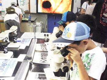 《わくわく実験室》今回は顕微鏡による観察を実施。普段見ることができない世界を覗いちゃおう!