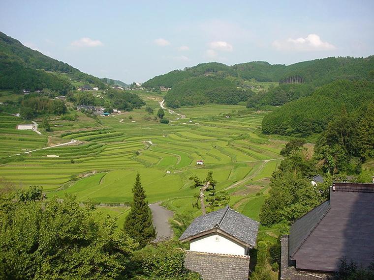 《棚田きんちゃいまつり》日本棚田百選のひとつ「大垪和西の棚田」に、ぜひきんちゃい。