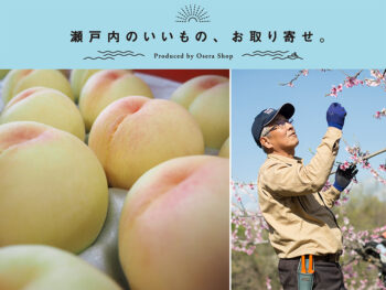 《岡山市一宮地区/フルーツファーム三宅》オセラショップだけの特別販売! 店頭ではお目にかかれない至極の清水白桃。
