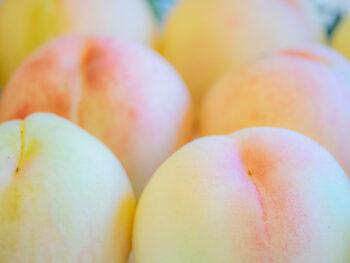 《桃のスウィーツバイキング》1年に10日間だけの特別なひとときを。人気企画の「桃バージョン」が誕生!