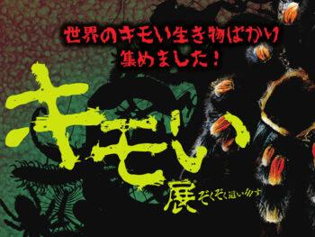 《キモい展》「キモい君が大好きさ!」。生き抜くためにキモくなった? 世界三大奇蟲が岡山登場!
