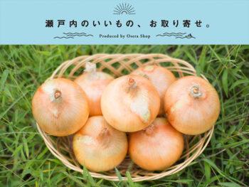 《兵庫県淡路市/里農園》見たことないほどの美しさ! 味も形も極上の淡路産タマネギ。
