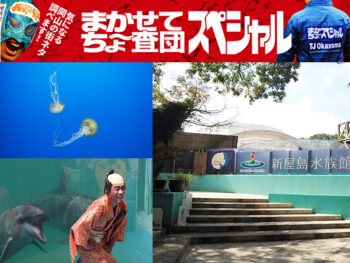 《高松市/新屋島水族館》貴重なマナティからスタッフ全力投球のイルカのライブまで、見どころ満載のユニークな水族館。