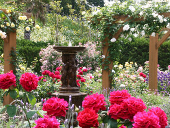 《玉野市/道の駅 みやま公園》花と緑が美しい庭園に、直売所、遊具、ドッグラン…。一日たっぷり楽しめる!