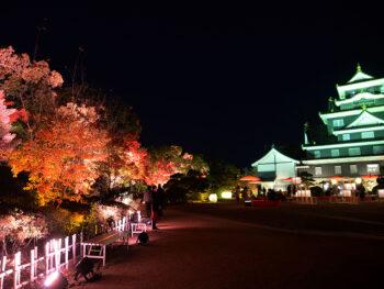 《秋の烏城灯源郷》今年のテーマは「秋彩烏城」。旭川に映り込む、美しくライトアップされた烏城の姿を愛でよう。