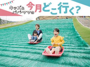 《矢掛町・勝央町・美咲町 おもしろアクティビティがある公園3選》珍しい遊具やアトラクションを親子で満喫しよう!