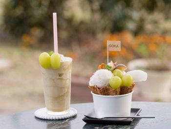 《岡山市/五果苑》生産者が直売する瑞々しいブドウと、もぎたてを使った絶品スイーツをご賞味あれ。