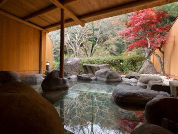 《島根県浜田市/金城観光ホテル》地元の人たちもこぞって通う、美人の湯を心ゆくまで