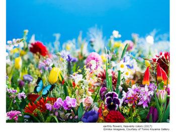 《蜷川実花展》写真家の枠を超えて活躍する「アーティスト・蜷川実花」の本質に迫る企画展。