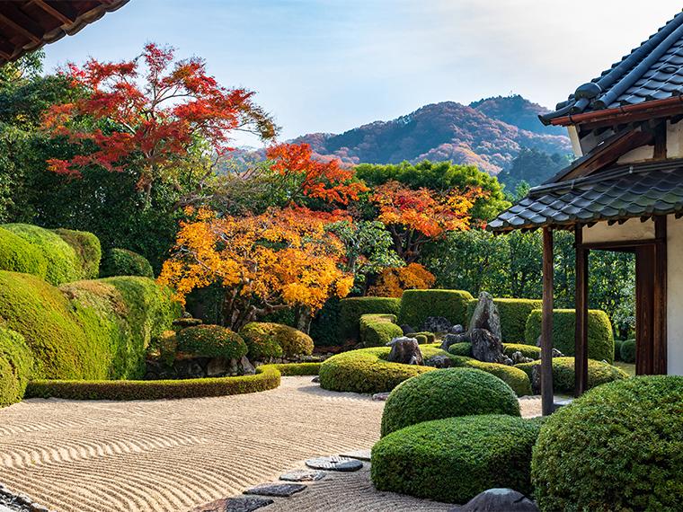 《頼久寺》愛宕山を借景に広がる、国指定名勝の枯山水庭園を観賞。